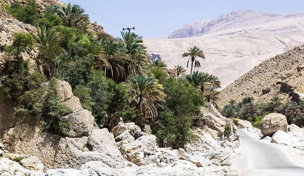 Wadi Oman iDrive 4x4